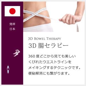 3D腸セラピー