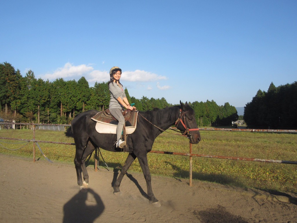 ワイズルーム 乗馬