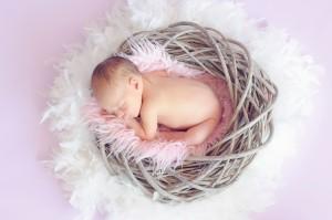 ワイズルーム 赤ちゃん