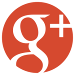 logo google plus Y's room ワイズルーム