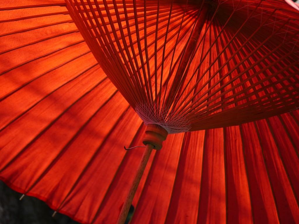 日本 傘 Japanese Umbrella ワイズルーム Y's Room