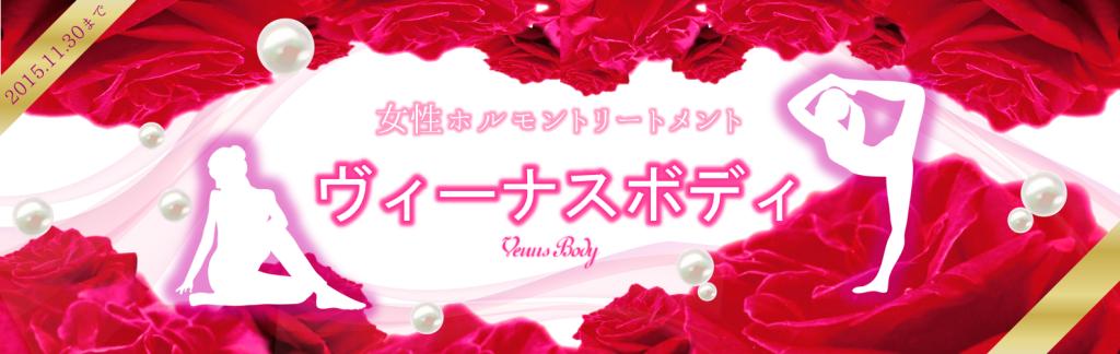 Venus Body Banner ワイズルーム ヴィーナスボディ