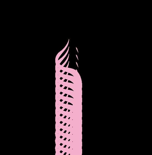 ワイズルーム 女性 ボディライン